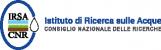 CNR IRSA Logo